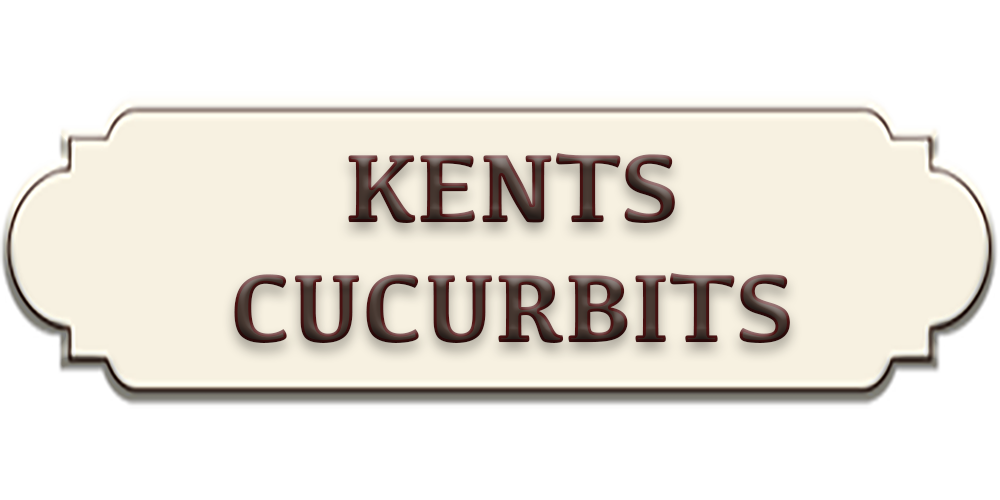Kent's Curcubits LLC